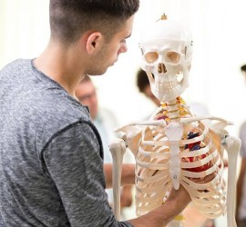 Academy of Osteopathic Science - Osteopathy education in Toronto